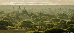 wanddecoratie, Bagan, Myanmar, tempels, zonsopgang, bomen, muur, foto, leuk, iets, ideeen, canvas, werk, print, hout, aluminium, digibond, woonkamer, kunst, online, shop, fotografie, Sven, Wildschut,